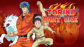 аниме, toriko