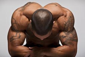 обои для рабочего стола 2560x1707 мужчины, - unsort, мышцы, тату, загар, рельеф, тело, спина