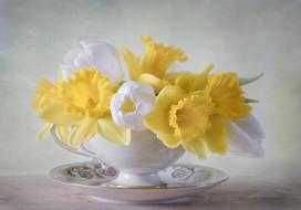 цветы, разные вместе, нарциссы, чашка, тюльпаны, букет, тарелка