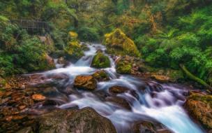 тропические леса, Милфорд, пейзаж, водопад, река, лес, камни, мост, Южный островНовая Зеландия, Фьордленд, Национальный парк
