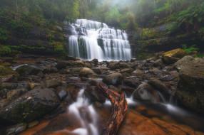 река, водопад, Австралия, Tasmania, Liffey Falls