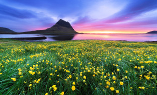 трава, небо, море, луга, цветы, горы