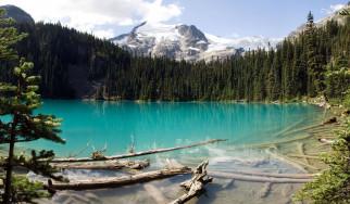 лес, бревна, горы, деревья, озеро
