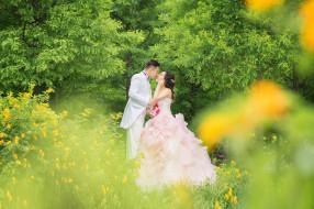 разное, мужчина женщина, жених, свадьба, праздник, платье, невеста, любовь