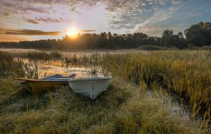 корабли, лодки,  шлюпки, река, лес