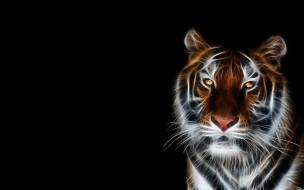 3д графика, животные , animals, голова, тигр, хищник, зверь