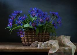 цветы, васильки, ткань, доска, полки, тюль, корзины
