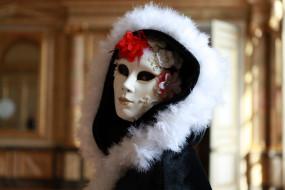 карнавал, цветок, маска, костюм, капюшон