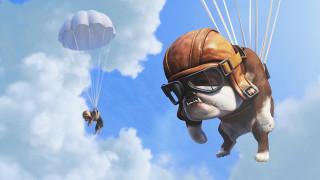 облака, шлем, парашют, очки, собака