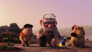 птенец, растения, мальчик, дедушка, собака