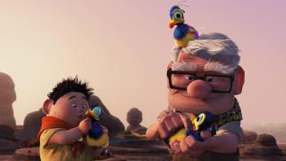 мальчик, дедушка, птенец, ребенок, камни, очки