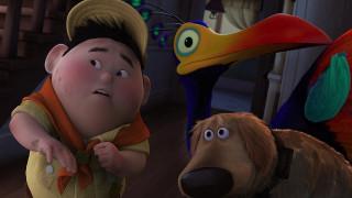 птица, ребенок, галстук, собака, мальчик