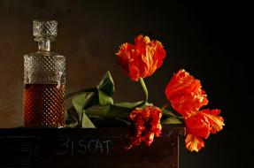 цветы, фон, тюльпаны