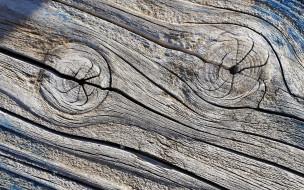 разное, текстуры, текстура, фон, дерево