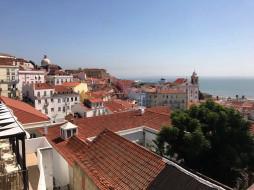 крыши, панорама