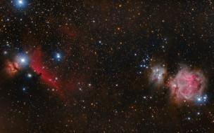 космос, галактики, туманности, звезды, конская, голова