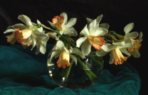 цветы, картина, ткань, ваза, нарциссы