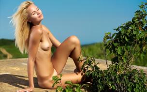 эротика, блондинки, фон, взгляд, девушка, грудь, talia cherry