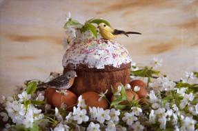 праздничные, пасха, яйца, крашанки, праздник, весна, андреянова