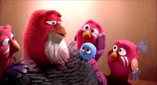 мультфильмы, free birds, борода, перья, раскраска, индюк, птенец