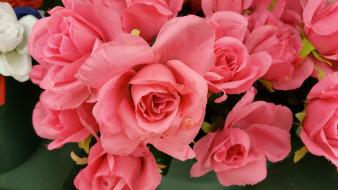 розы, искусственные