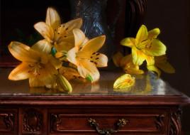 цветы, лилии,  лилейники, вода, бутоны, капли