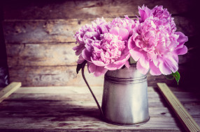 цветы, пионы, доски, кувшин, букет