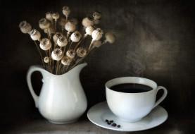 еда, кофе,  кофейные зёрна, чашка, мак