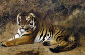 картина, Жан-Леон Жером, животные, кошка, Тигр