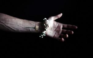 пластырь, цветок