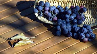 корзинка, виноград, листья