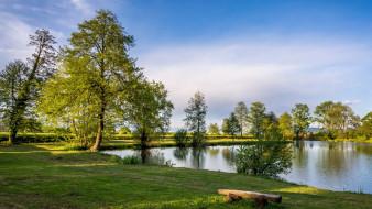озеро, лето, деревья, скамейка