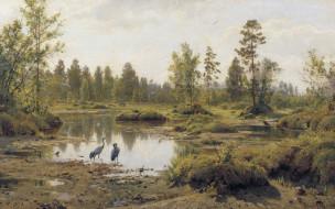птицы, Полесье, Болото, Иван Шишкин, картина, цапля, пейзаж, природа