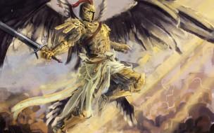 крылья, оружие, шлем
