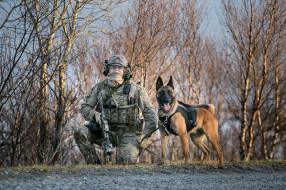 оружие, армия, собака, солдат