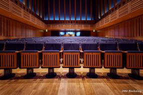 интерьер, театральные,  концертные и кинозалы, кресла