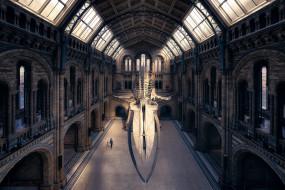 обои для рабочего стола 2048x1367 интерьер, дворцы,  музеи, музей