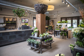 интерьер, - другое, стиль, дезан, цветы, цветочный, магазин