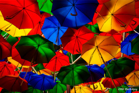 разное, сумки,  кошельки,  зонты, зонты