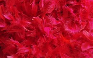 много, перья, розовые