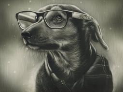 очки, морда