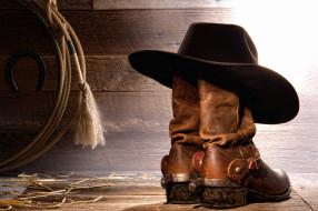 лассо, ковбойские, сапоги, шляпа