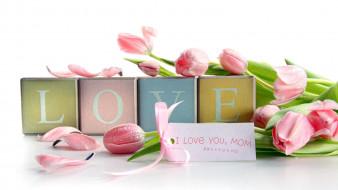 праздничные, день святого валентина,  сердечки,  любовь, тюльпаны