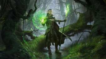 фэнтези, эльфы, nissa, -, sage, animist, wesley, burt, маг, нисса, ревейн, revane, magic, the, gathering, planeswalker
