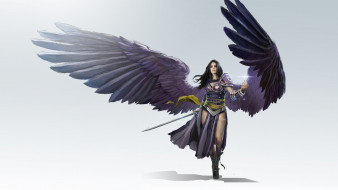 Black Planeswalker, девушка, воин, арт, LVL, todd hebenstreit, оружие, крылья, fantasy