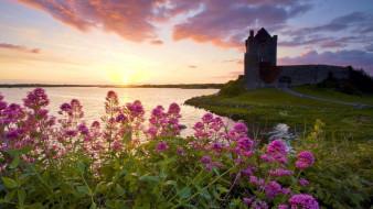 dunguaire castle,  kinvara county,  galway,  ireland, города, замок дангвайр , ирландия, dunguaire, castle, kinvara, county, galway, ireland