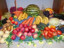 еда, арбуз, морковь, яблоки, капуста, помидоры, томаты