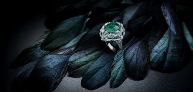 перья, камень, украшение, кольцо