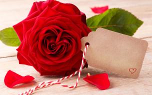 праздничные, день святого валентина,  сердечки,  любовь, flowers, red, розы, romantic, roses, valentine`s, day, love, heart, бутоны, красные
