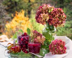 вишня, гортензия, варенье, цветы